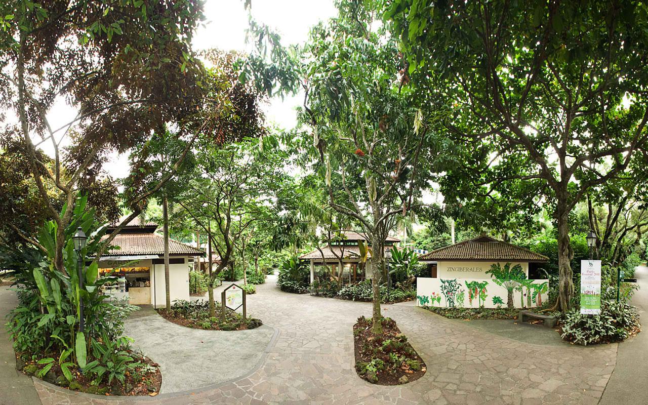 Raffles Hotel Singapur, hoteles para luna de miel en Singapur, luna de miel en Asia - Wedding Hub - 07