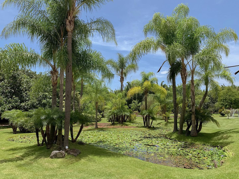 Jardín Huayacán, Ixaya, Hotel Huayacán, lugares para boda en Morelos, hoteles para boda en Morelos - Wedding Hub - 010