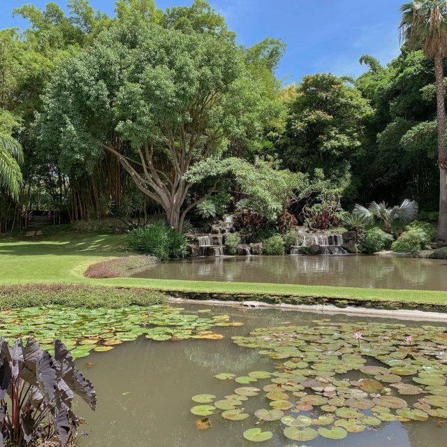 Huayacán: Jardines mega top, un hotel ultra cool, ¡y más para tu boda!