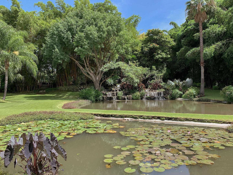 Jardín Huayacán, Ixaya, Hotel Huayacán, lugares para boda en Morelos, hoteles para boda en Morelos - Wedding Hub - 09